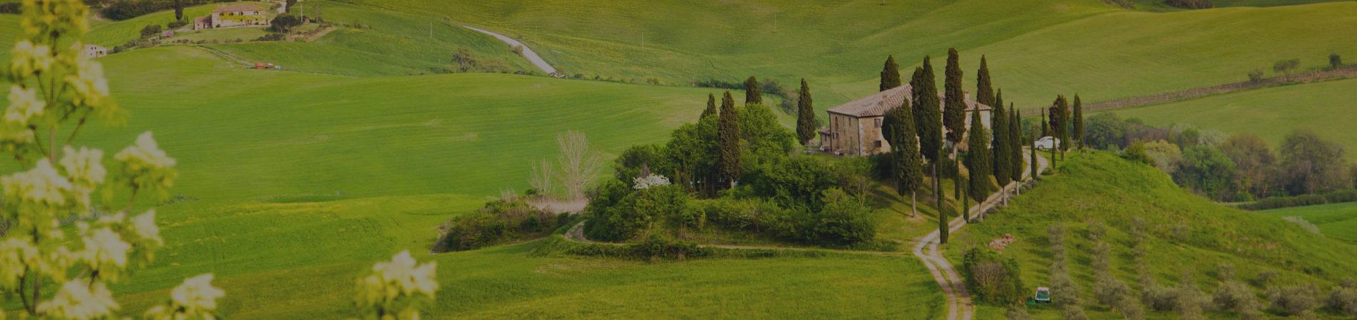 Tuscany Wide